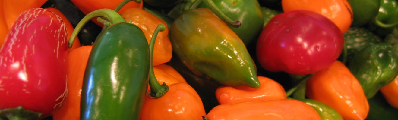 Farm 8 Peppers
