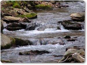 pa stream